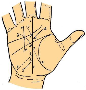 fate line raising palmistry