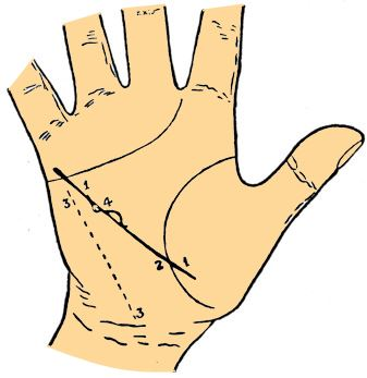 health line palmistry