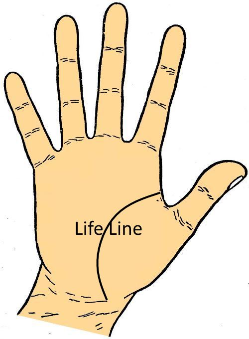 Life Line - Palminstry