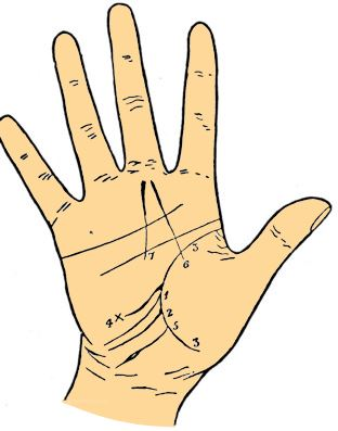 Travel line palmistry
