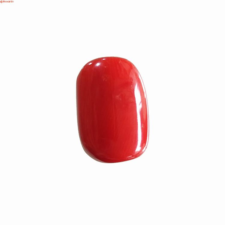 red coral premium extra large size